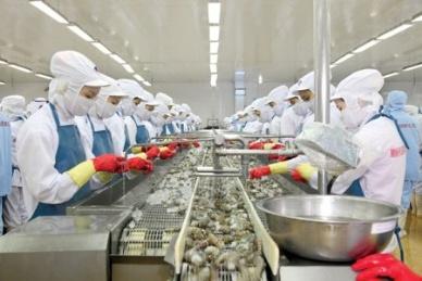 DN thủy sản sử dụng nhiều lao động (trên 300 lao động) được gia hạn 06 tháng thời hạn nộp Thuế TNDN