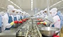 Chính phủ đưa ra nhiều giải pháp tháo gỡ khó khăn cho doanh nghiệp thủy sản